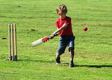 BLC Cricket